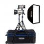 Hensel PRO 500 2 Light Kit